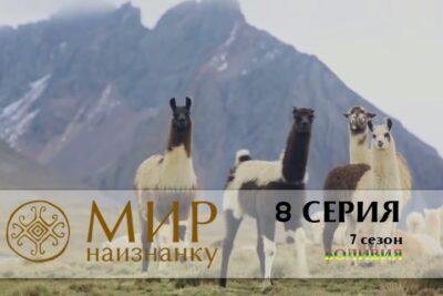 Мир наизнанку 7 сезон Боливия 8 серия